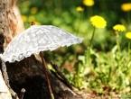 Savjeti za zdravo ljeto