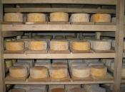 Livanjski sir uskoro bi mogao biti zaštićen?