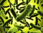 Smrtonosna bolest ubija u 24 sata, u opasnosti 450 milijuna ljudi