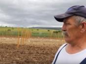 VIDEO: Duvanjski vinogradari