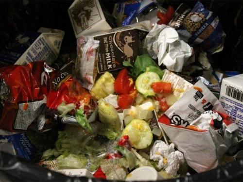 500 tona hrane dnevno završi na bh deponijama