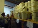 ''Čuvari svetišta'' otkrili 'tvornicu' lažnog meda u Bijakovićima