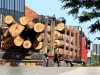 Nelegalno prevozili drva, pa htjeli podmititi policajce