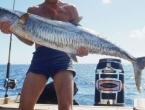 Stravična smrt: Ogromna skuša iskočila iz mora i ubila ribara