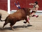 Bik oborio i ozlijedio matadora Josea Padillu