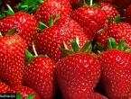 Koliko jagoda i trešanja zaista smijemo pojesti?