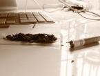 Znanstvenici zabrinuti zbog marihuane