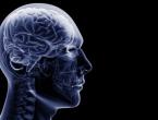 U mozak može stati informacija koliko i u 4,7 milijardi knjiga
