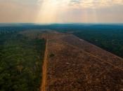 Klimatske promjene izbrisat će Amazonsku prašumu s lica Zemlje do 2064.