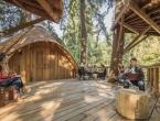 Radno mjesto iz snova: Microsoft za svoje zaposlenike napravio kućice na drveću