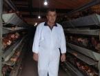 Odličan posao i zarada sa farmom koka nosilica