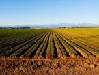 Poljoprivreda u BiH je na koljenima, stanovništvo trujemo jeftinom hranom iz uvoza