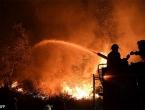Šumski požari u Portugalu odsjekli od svijeta mjesto s 2.000 ljudi