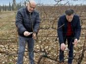 Tomić: Sveučilište u Mostaru ulazi u proizvodnju eko-hrane