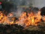 Požari u Hercegovini još aktivni, na Mluši gorjela trava