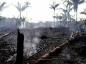 Kakve veze požari na Arktiku i Amazoniji imaju sa našim prostorima?