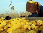 U 2016. rast proizvodnje kukuruza, soje, krumpira i graha