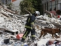 Najmanje šestero poginulih u eksploziji zgrade u Parizu
