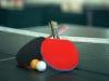 "U subotu međunarodni turnir u stolnom tenisu ""Rama open 2019."""