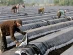 Oko 1.000 sezonaca u 'radnoj karanteni' pod nadzorom policije - smiju samo na rad u polje