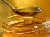 Zbog manjih prinosa med bi mogao koštati i 20 KM po kilogramu