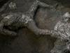 Pronađeni ostaci dvojice muškaraca stradalih u erupciji u Pompeji