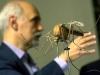 Malarija se širi Jugoistočnom Azijom