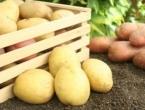 Uskoro izvoz krumpira iz BiH u Europsku uniju