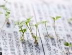 Japan oduševio svijet: Dnevne novine iz kojih niče cvijeće