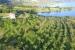 OGLAS: Prodaje se kuća i zemljište u Ripcima