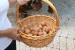 FOTO: Borići donijeli novitet u Ramu – slobodnim uzgojem koka proizvode zdrava jaja