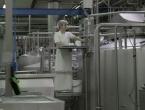 Mljekara Livno za tursko tržište isporučuje prvu narudžba od 20 tona sira