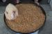 Keške - božićno jelo u Rami, evo ukusnog recepta!