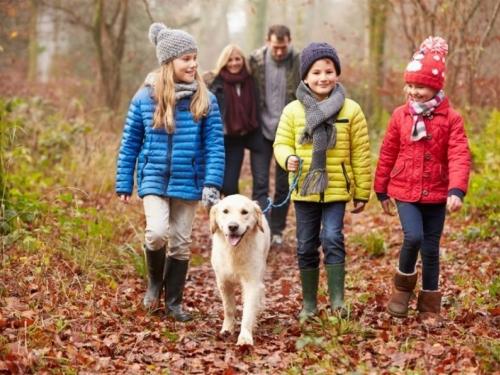 Savjeti za odgajanje sretnog djeteta