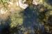 FOTO/VIDEO: Lug - netaknuta prirodna ljepota Rame