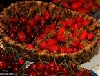 Bogatstvo iz prirode: Što se sve krije u trešnjama