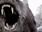 Pogledajte kako je medvjed terorizirao građane New Yorka