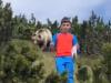 Bliski susret s medvjedom: ''Ne okreći se...''