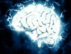 Zašto je ljudski mozak toliko velik?