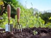 U BiH je 50 posto poljoprivrednog zemljišta neiskorišteno