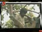 Devet mjeseci na drvetu čeka da mu se žena ispriča jer ga je varala