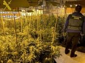 Hrvat u luksuznoj kući napravio plantažu marihuane