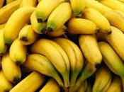 Detalji o 18 kg kokaina među bananama u trgovini, otkrila ga prodavačica