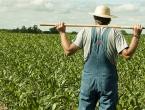 700 radnih mjesta u poljoprivredi