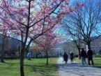 Proljeće se vraća: Temperature i do 22 stupnja