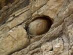Misteriozne stijene svakih 30 godina izlegnu kamena jaja...