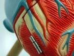 Srce žena i muškaraca različito stari