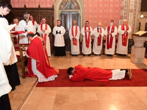 FOTO: Kardinal Puljić za svećenika zaredio Josipa Dedića