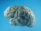Ne postoji muški i ženski mozak