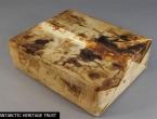 Na Antarktici pronađeni savršeno očuvan 106 godina star voćni kolač